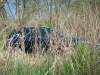 2014-Jeep-Cherokee-42-v6-limited-blau-16