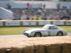 goodwood-festival-of-speed-2013-mercedes-benz-16